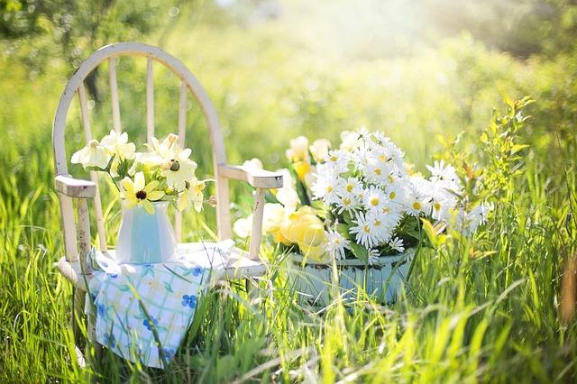 Jardins de Bagatelle Guerlain: una sinfonia di fiori bianchi
